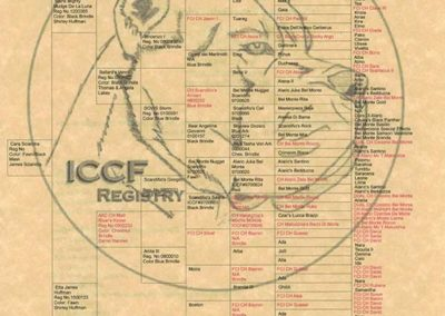 Cara-s-ICCF-Pedigree