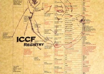 ICCF-pedigree