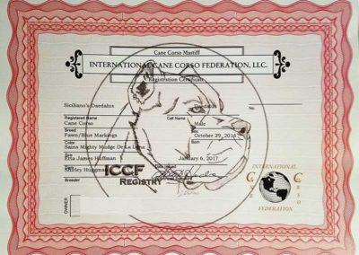 ICCF-registration