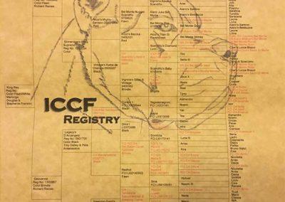 Rex-ICCF-Pedigree